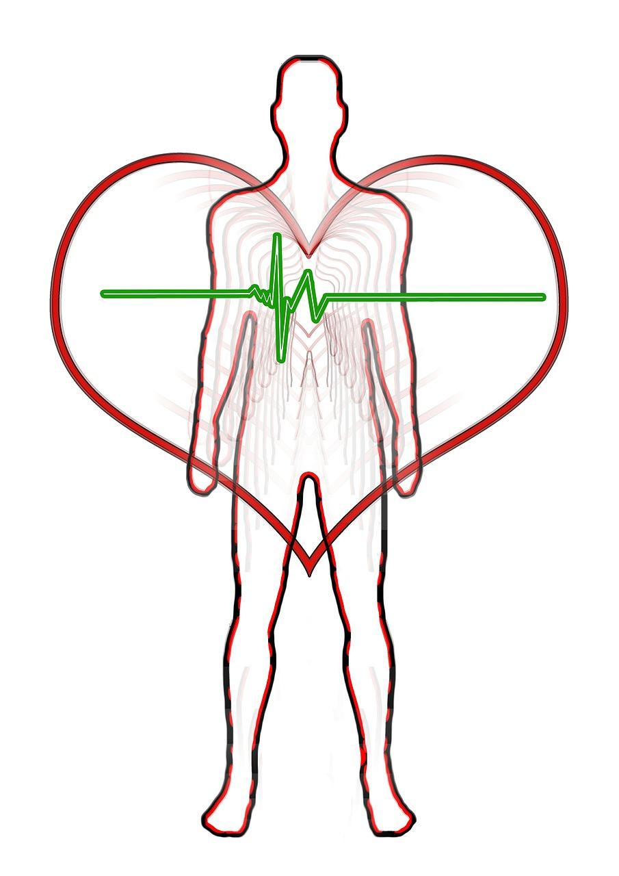 想像以上に効果の高い武術の動作。血流を促して体幹をトレーニングしたい人はこれ